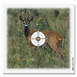 94*0 - Wild und Tier...