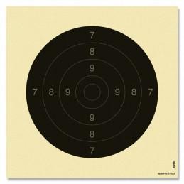 3130A - 250 Pistolen...